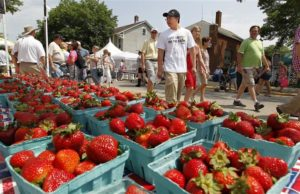 Strawberry fest has come and gone, Summerfest is right around the corner 1